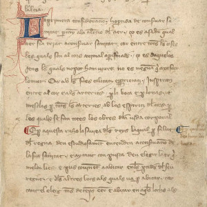 10. Beginning of the text of the work in manuscript M of the Catalan translation of Arnald's 'Regimen of Health' (Madrid, BNE, MS 10078, f 5r).